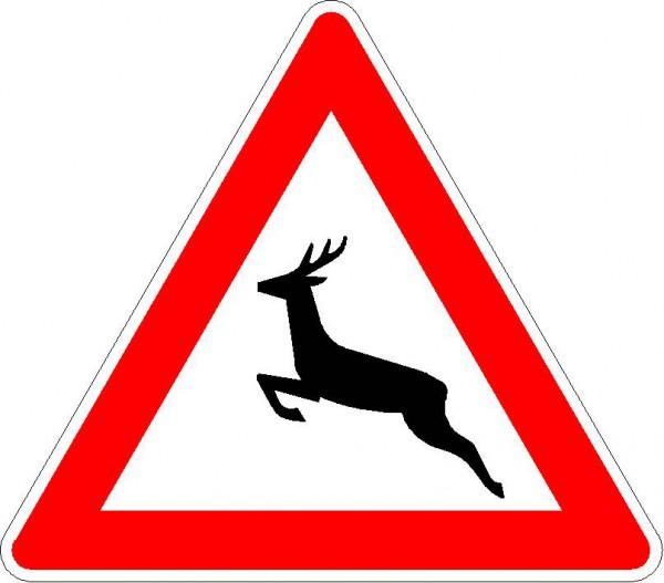 Verkehrszeichen Wildwechsel, Aufstellung rechts