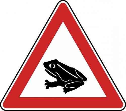 Verkehrszeichen Amphibienwanderung, Aufstellung rechts